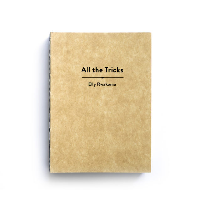 Cover Ebifananyi 3: All The Tricks