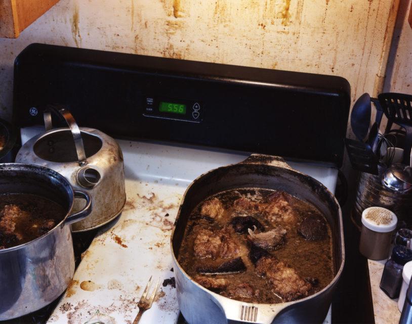 Walrus Stew - The Last Days Of Shishmaref
