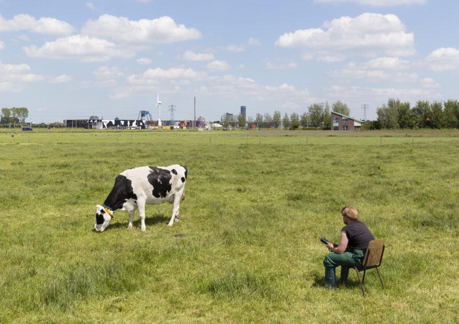 Testing equipment at Dairy Campus, Leeuwardem (2015)