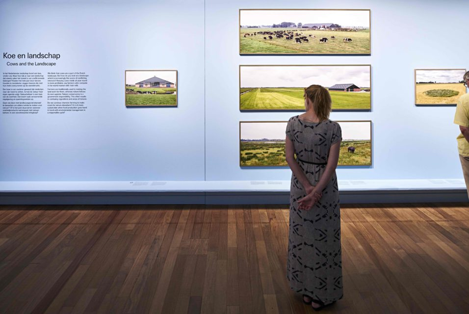 The exhibition contains photographs in various sizes, concerning four main subjects.