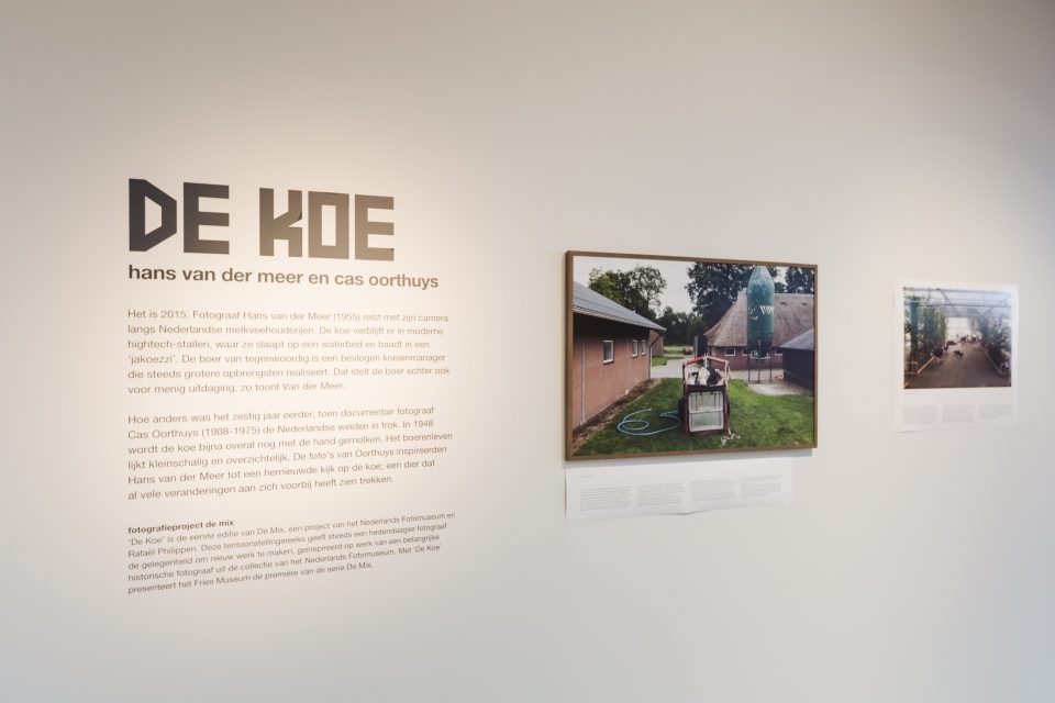 Hans van der Meer, 'De Koe', Fries Museum, 26.03 - 05.06-2016