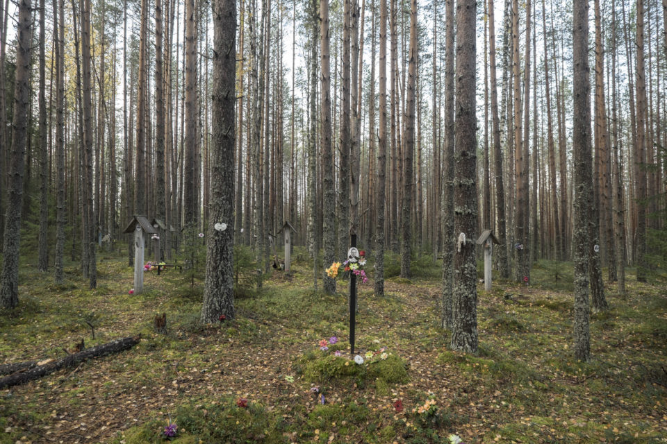 In 1997 more than nine thousand bodies were discovered in the woods near the White Sea Canal. Memorial established a cemetery on the site.