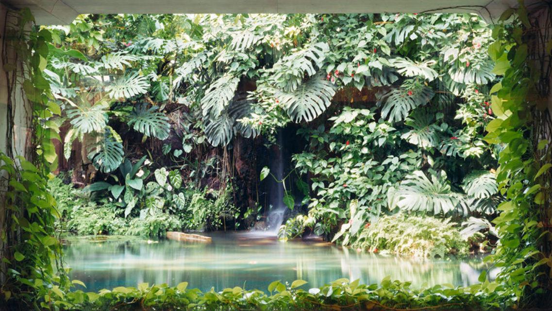 Reservoir, 2005
